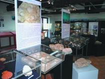 Museo Aquilegia